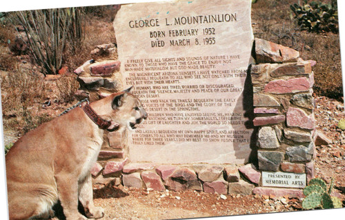 George Mountainlion
