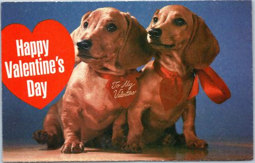 Dachshunds - Happy Valentine's Day