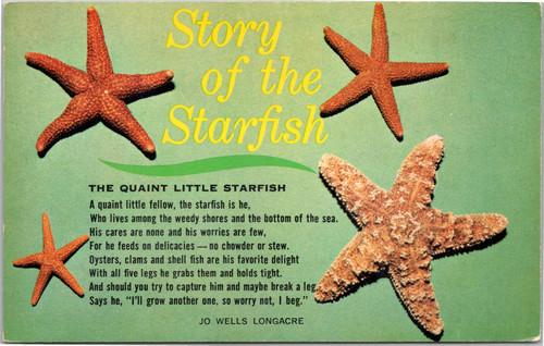 Story of the Starfish