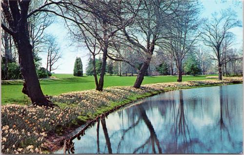 Longwood Gardens daffodils lake