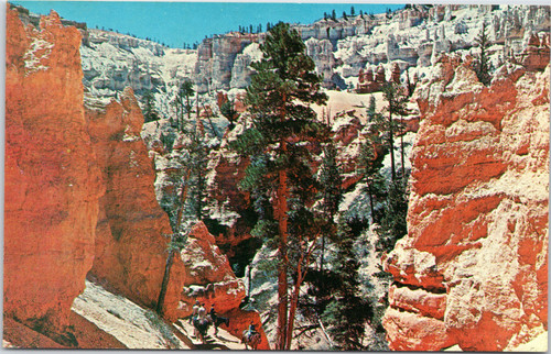 Bryce Canyon - horse trail into canyon