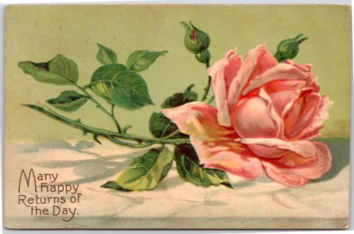 Rose - Great American Novelty Art Series No 1066