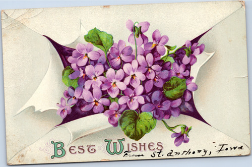Best Wishes - violets breaking through paper