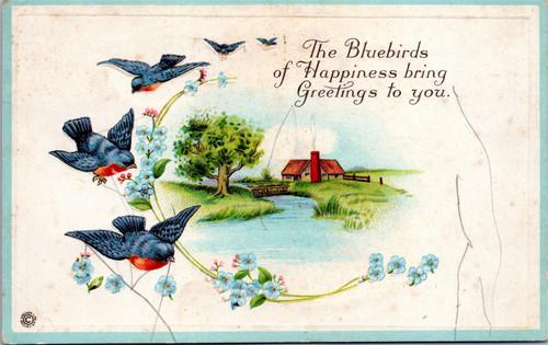 Stetcher Bluebirds of Happiness