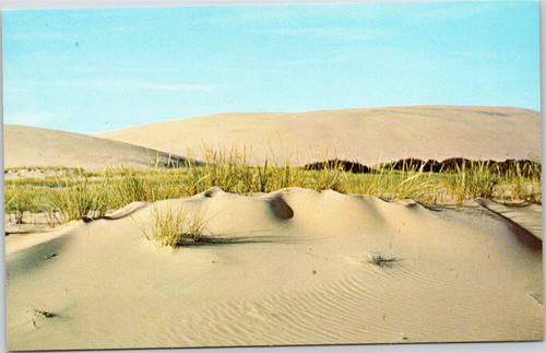 Sand dunes of the Outer Banks