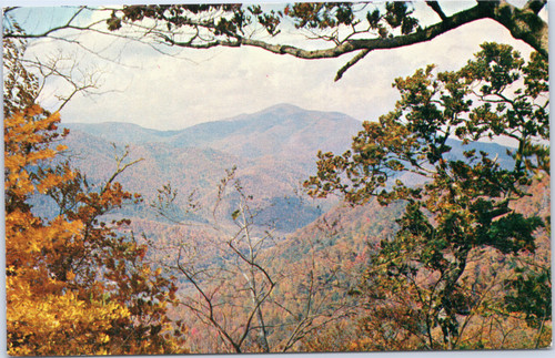 Cold Mountain from Wagon Road Gap