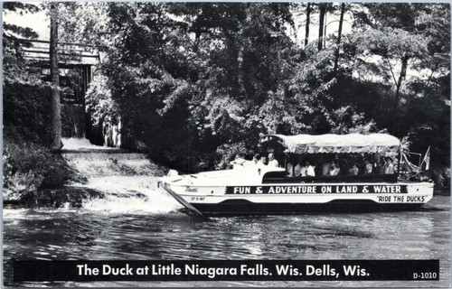 Wisconsin Dells  Duck at Little Niagara Falls