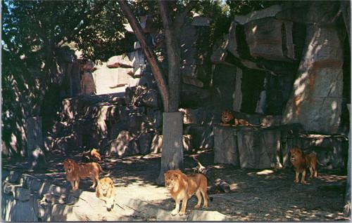 Detroit Zoological Park