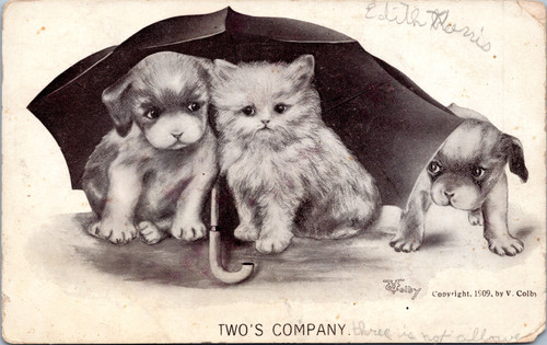 Puppy Kitten Umbrella
