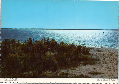 Moonlight Bay - Del-Mar-VA Pennisula   (14-6939)