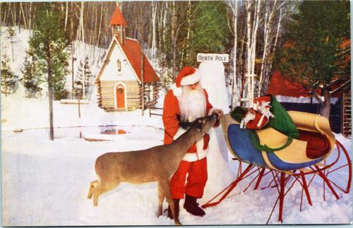 Santa feeding deer