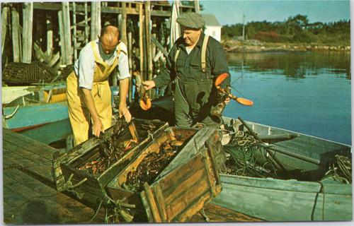 Maine lobster fishermen