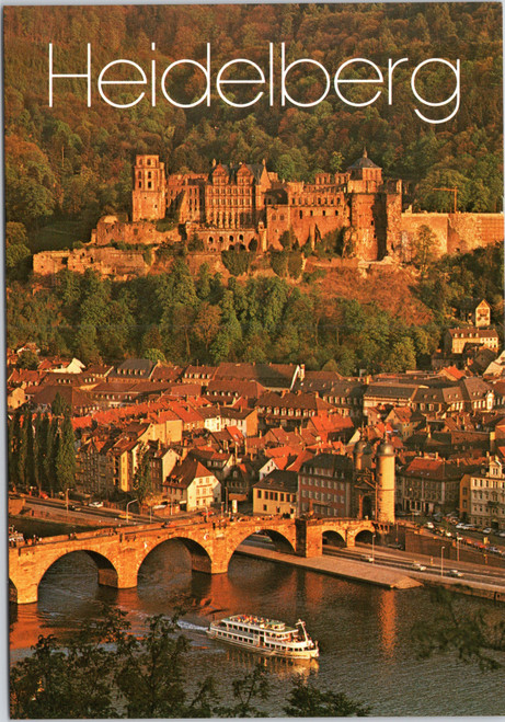 Heidelberg castle and town  (9348)