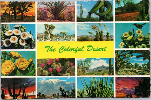 scenic desert