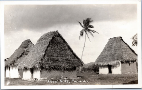 Reed Huts in Panama