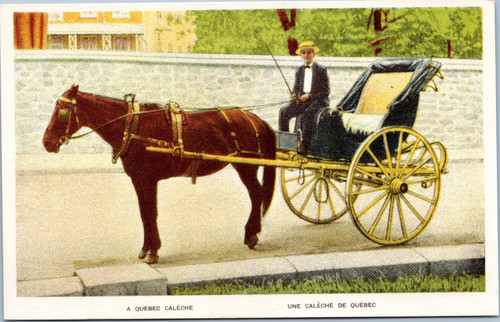 Caleche horse-drawn carriage