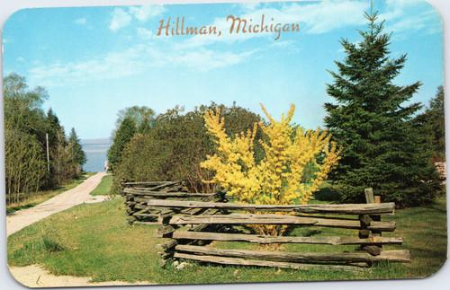 Hillman Michigan