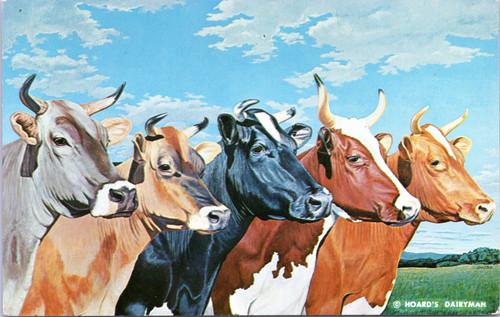 Hoard's Dairyman - Five Queens   (20-11-840)