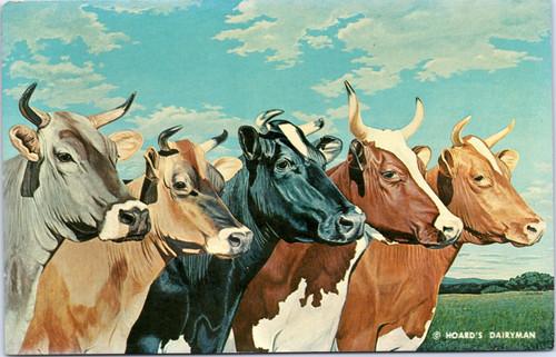 Hoard's Dairyman - Five Queens   (20-11-841)