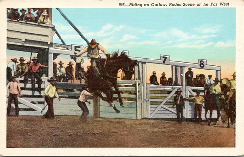 Rodeo Bronco busting