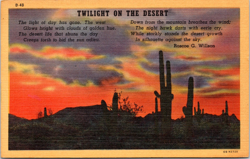 Twilight on the Desert