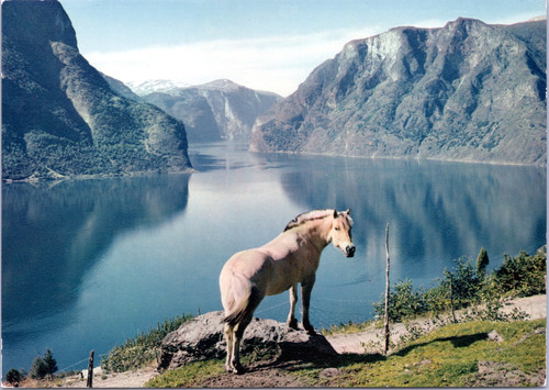Sogn Norway