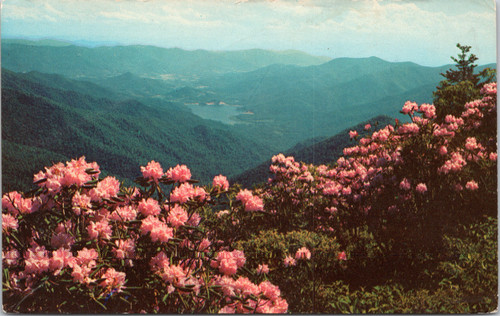 Asheville Watershed - view from Potato Knob