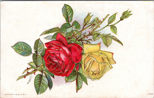 Red and Yellow rose (26-15-736)