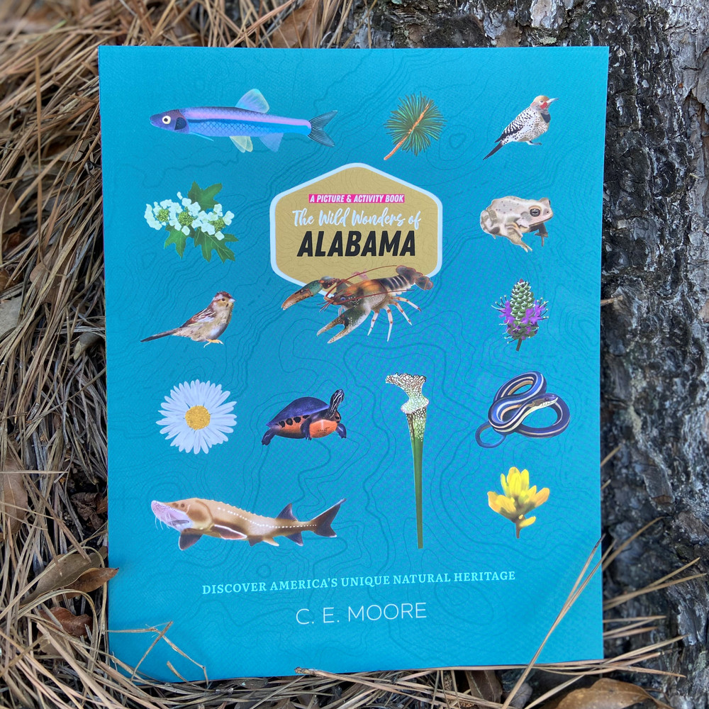 The Wild Wonders of Alabama - Picture and Activity Book