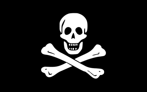 Jolly Roger - Outdoor Flags