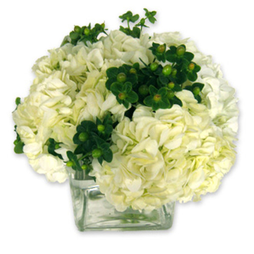 White hydrangeas and green hypericum berries make this floral arrangement a lucky choice.