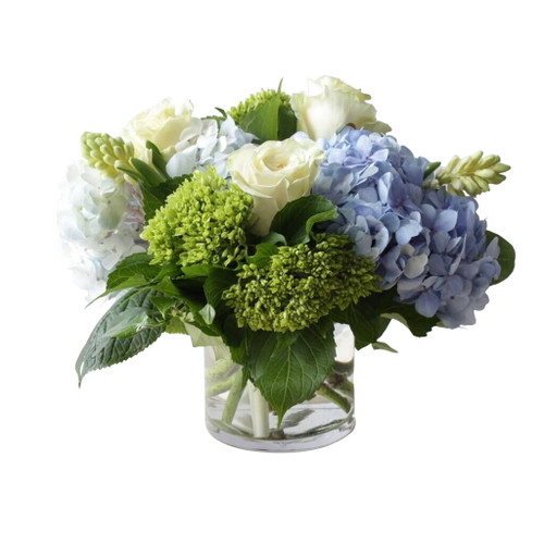 Blue hydrangeas, white roses and mini green hydrangeas expertly arranged in a gorgeous springtime gift