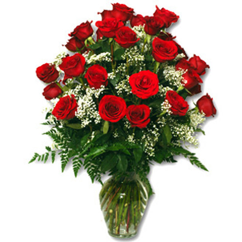 TWO DOZEN ROSES GREAT VALUE