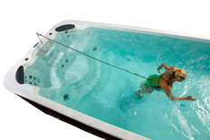 Swim Tether Mini | Arctic Spas