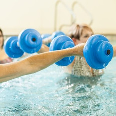 Aquatic Dumb Bells | Arctic Spas