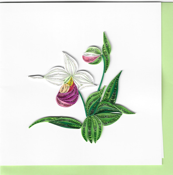 Quilled Lady's Slipper Greeting Card