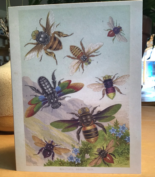 Exotic Bee Magic Card