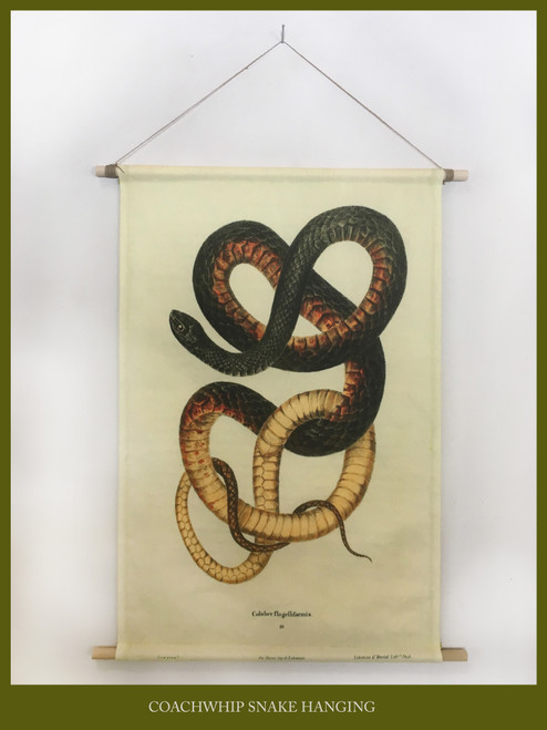 Snake Magic Wall Hanging