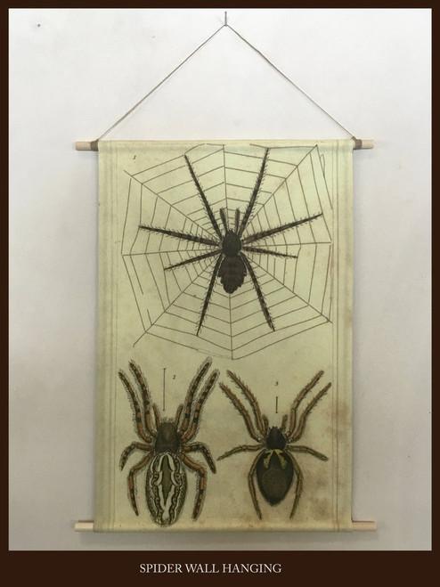 Spider Magic Wall Hanging