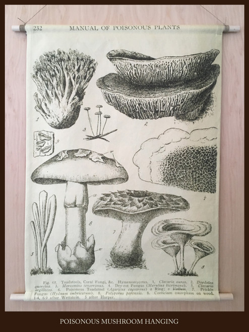 Wall Hanging - Poisonous Mushroom