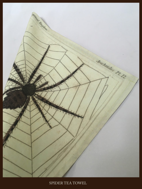 Tea Towel - Spider