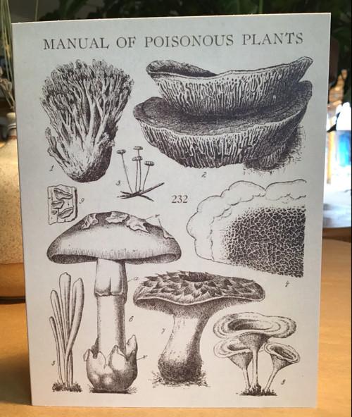 Poisonous Mushroom Card