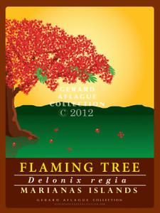 Flaming Tree (Flame Tree)