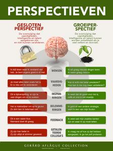 Dutch Growth Mindset Poster