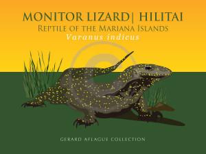 Monitor Lizard - Hilitai - Fine-Art Print - 18x24 inches