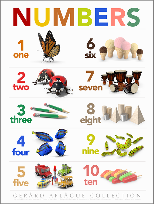 High Quality Print: Teacher Created Numbers Classroom Poster