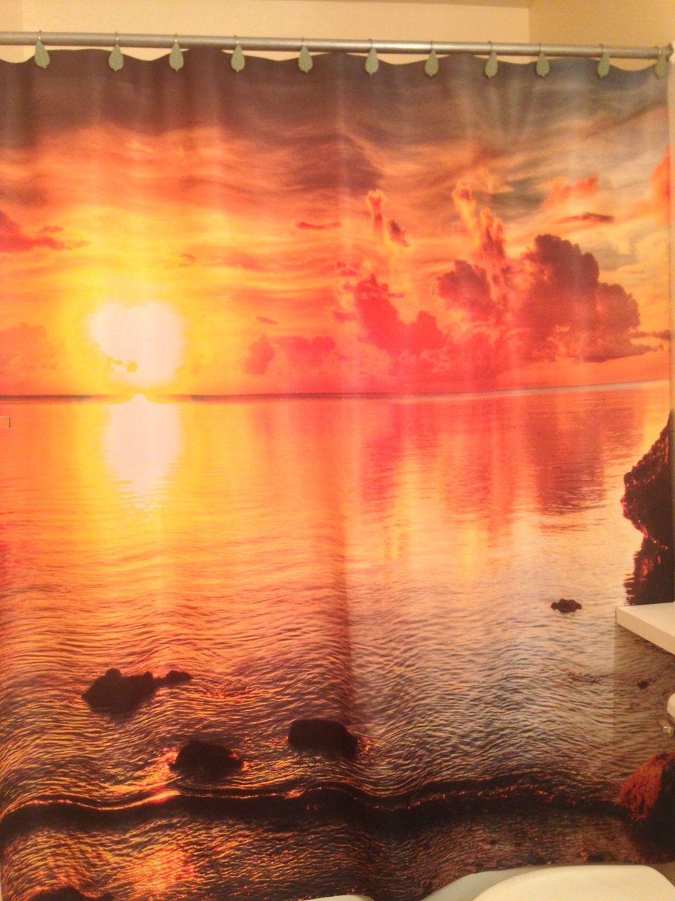 Fiery Tropical Sunset Shower Curtain