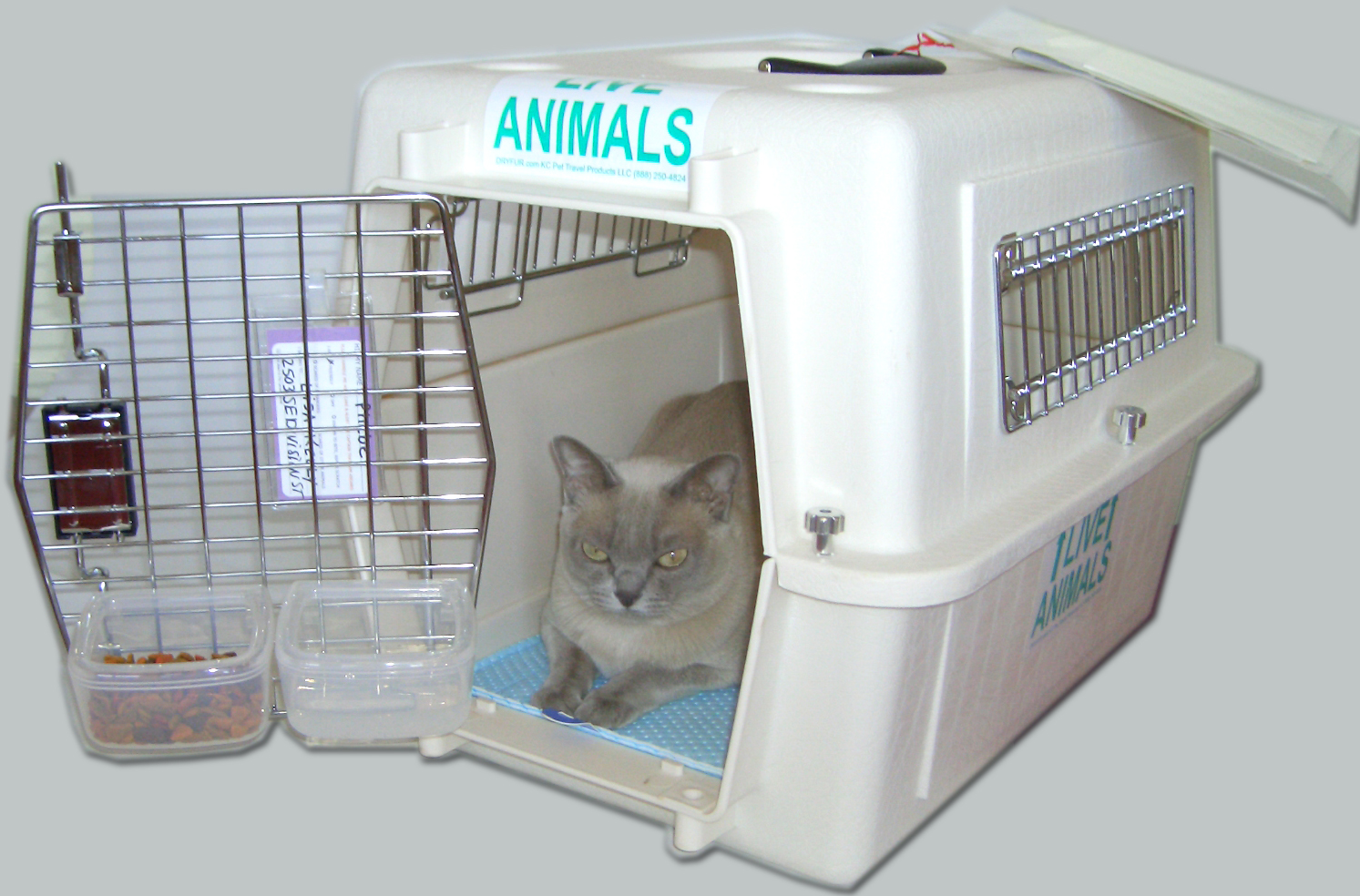kennel-hook-on-dishes.jpg