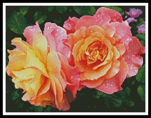 Roses in a Garden Counted Cross Stitch Pattern