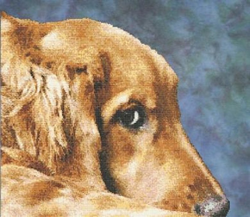 Golden Eyes Counted Cross Stitch Pattern